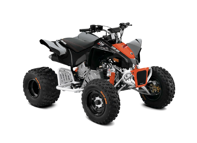 Can-Am DS 90 X 2020